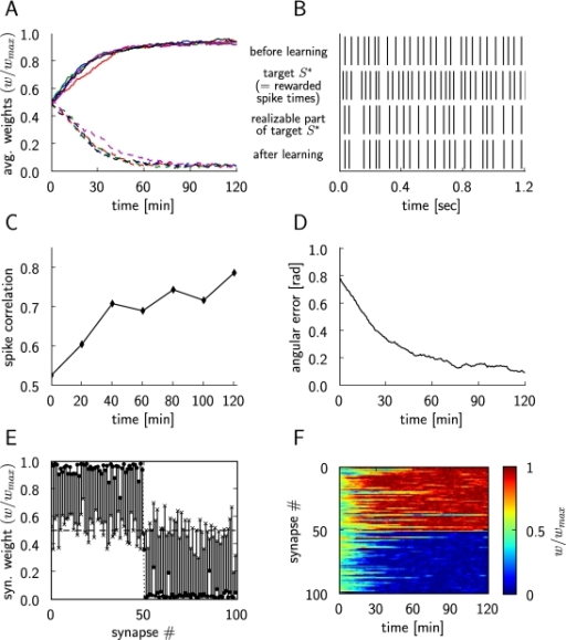 Results for reinforcement learning of exact spike times throughreward-modulated STDP.(A) Synaptic weight changes of the trained LIF neuron, for 5 differentruns of the experiment. The curves show the average of the synapticweights that should converge to  (dashed lines), and the average of the synapticweights that should converge to  (solid lines) with different colors for eachsimulation run. (B) Comparison of the output of the trained neuronbefore (top trace) and after learning (bottom trace). The same inputspike trains and the same noise inputs were used before and aftertraining for 2 hours. The second trace from above shows those spiketimes S* which are rewarded, the third traceshows the realizable part of S* (i.e. thosespikes which the trained neuron could potentially learn to reproduce,since the neuron μ* produces themwithout its 10 extra spike inputs). The close match between the thirdand fourth trace shows that the trained neuron performs very well. (C)Evolution of the spike correlation between the spike train of thetrained neuron and the realizable part of the target spike trainS*. (D) The angle between the weight vectorw of the trained neuron and the weight vector w* of the neuronμ* during the simulation, inradians. (E) Synaptic weights at the beginning of the simulation aremarked with ×, and at the end of the simulation with•, for each plastic synapse of the trained neuron. (F)Evolution of the synaptic weightsw/wmax during thesimulation (we had chosen  for i<50,  for i≥50).