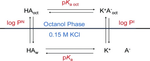 The thermodynamic cycle of the ionization and partitioning of an acid between octanol and water.