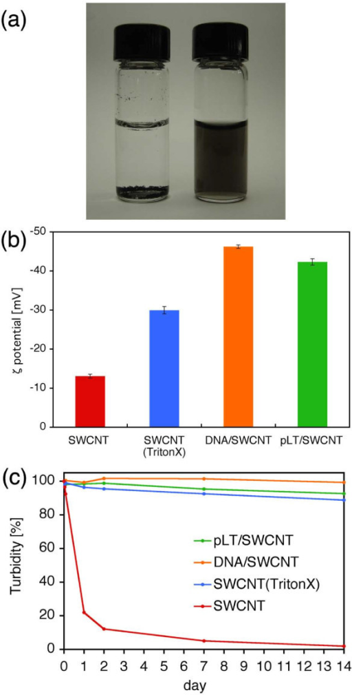 Dispersion of SWCNTs in distilled water. (a) Dispersion of SWCNTs in distilled water 14 days after the preparation. Left: SWCNTs without any surface modification. SWCNTs coagulated to each other and finally sedimented. Right: SWCNTs modified with pLT. pLT/SWCNT complexes remained stably dispersed for at least 14 days. (b) ζ potentials of SWCNTs in DW, SWCNTs in TritonX-100 solution, dsDNA/SWCNT complexes in DW, and pLT/SWCNT complexes in DW. The ζ potentials were measured 14 days after the preparation. The ζ potential of pLT/SWCNT complexes in DW is slightly lower than that of dsDNA/SWCNT complexes in DW, but higher than that of SWCNTs in TritonX-100 solution. (c) Time variations of the turbidity of SWCNTs in DW, SWCNTs in TritonX-100 solution, dsDNA/SWCNT complexes in DW, and pLT/SWCNT complexes in DW. The turbidity of SWCNTs in TritonX-100 solution, dsDNA/SWCNT complexes in DW, and pLT/SWCNT complexes in DW hardly changed for 14 days, whereas SWCNTs without any surface modification sedimented quickly. The turbidity of pLT/SWCNT complexes in DW was slightly lower than that of dsDNA/SWCNT complexes in DW, but higher than that of SWCNTs in TritonX-100 solution.