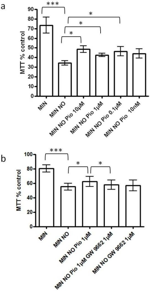 Effect of pioglitazone on DETANONOate-mediated reductions in neuronal survival in cortical neuronal cultures. (a) The effect of DETANONOate exposure (MIN NO) on cortical neuronal cell viability in vitro compared to serum free minimal media (MIN); and the effect of different concentrations (10 nM to 10 μM) of peroxisome proliferator activated receptor-γ (PPAR-γ) agonist, pioglitazone (Pio) on cortical neuronal cell viability in vitro (***P < 0.001 compared to MIN and *P < 0.05 compared to MIN NO; n = 5). Cultures were pre-treated with pioglitazone for 1 hour, prior to exposure to DETANONOate. (b) The effect of pre-treatment with the specific PPAR-γ antagonist, GW9662 (1 μM) on cortical neuronal viability in vitro compared to the effect of pioglitazone (1 μM) (***P < 0.001 compared to MIN, *P < 0.05 compared to MIN NO and *P < 0.05 compared to MIN NO Pio 1 μM). Cultures were treated with GW9662 for 1 hour prior to incubation with pioglitazone and DETANONOate. Cell viability was assessed by MTT assay. Data are expressed as percentage of cells grown in B27. Statistical significance was obtained by one-way ANOVA followed by a Bonferroni post-hoc test. ANOVA, analysis of variance.