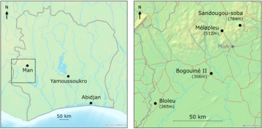 Study sites location. Four villages located in the Man region, western Côte d'Ivoire, were selected for this study. Bogouiné II and Bloleu are in a plain at relatively low altitude (340 and 346 m above sea level, respectively). Mélapleu and Sandougou-soba are in a mountainous area at relatively high altitude (529 and 883 m, respectively). Maps have been generated using GPS Visualizer [24].