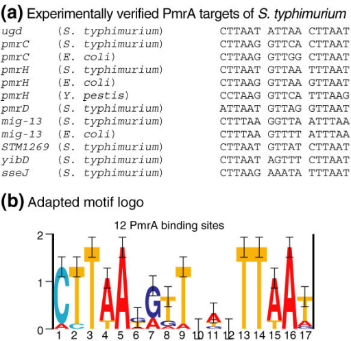 Refined consensus of the PmrA box. (a) Alignment of all experimentally verified PmrA sites ([15] or this work) in S. typhimurium [1]. PmrA sites in the orthologs of these respective experimentally verified genes are also displayed if these PmrA motif instances deviated from the PmrA motif in S. typhimurium. (b) An adapted motif model of the PmrA site was built (represented by its logo) on the basis of the sequences represented in (a).