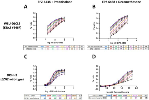 Glucocorticoid agonists enhance potency of EPZ-6438 in EZH2 mutant and wild-type germinal center B cell lymphoma.Combinations of EPZ-6438 with Prednisolone or Dexamethasone in WSU-DLCL2 EZH2 mutant (A, B) and DOHH2 EZH2 wild-type (C, D) GCB lymphoma cell lines, respectively. All dose response plots were generated in Graphpad Prism and curves fitted to a four-parameter model with variable slope (2 biological replicates). Doses of EPZ-6438 ranged from 15.6–1000 nM, doses of Prednisolone ranged from 7.8–1000 nM, and doses of Dexamethasone ranged from 0.8–100 nM. A, B) Potency of EPZ-6438 was increased with Prednisolone or Dexamethasone in EZH2 mutant WSU-DLCL2 cells. C, D) EPZ-6438 showed no anti-proliferative effect as a single agent in DOHH2 EZH2 wild-type cells, therefore the potency shift of Prednisolone or Dexamethasone was measured. The potency of Prednisolone or Dexamethasone was increased with addition of EPZ-6438 in DOHH2 cells.