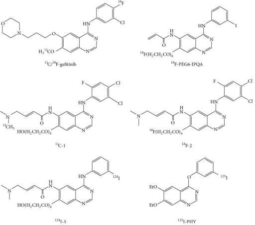 Chemical structures of the EGFR-TK imaging probes.