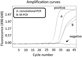 M-PCR did not increase detection of the mecA gene in purified DNA. To compare the detection sensitivity of the M-PCR method with the conventional real-time PCR method, we made diluent using the purified DNA of MRSA. DNA was first purified from cultured MRSA and dissolved in 5 mL PBS. Next, DNA was purified by conventional methods (A) or following centrifugation (B: M-PCR). A comparative Ct (ΔCt) analysis was performed to examine fold changes of the mecA gene. The results showed that M-PCR did not increase the detection of the mecA gene in purified DNA. The experiment was performed in triplicate with similar results.