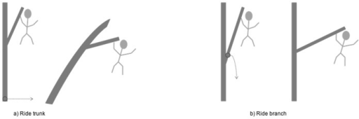 Illustrations to show the definition of the take-off support.The take-off support during the gap crossing behaviour ride was recorded as the support that deformed rather than the support the animal was holding on to. A) ride on trunk and B) ride on branch.