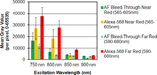 Effect of red filter bandpass on two-photon (2P) red-to-green fluorescence intensity ratios representing the signal-to-noise ratio in the red channel. Pixel intensity (mean gray value) was calculated in five regions of interest (ROIs) positioned in each image frame (see Figure 6). In the absence of Alexa-568 (-Red Dye), red channel fluorescence was attributed to broad spectrum Hoechst 33342 and autofluorescence (AF) bleed-through. Alexa-568-to-AF bleed-through mean gray value ratios decreased with increasing excitation wavelength (800 to 900 nm) and were highest through a far-red filter (590–680 nm). For the ratio values, see Table 1.