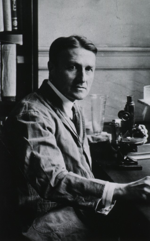<p>Half-length, seated at table with microscope, right pose, full face.</p>