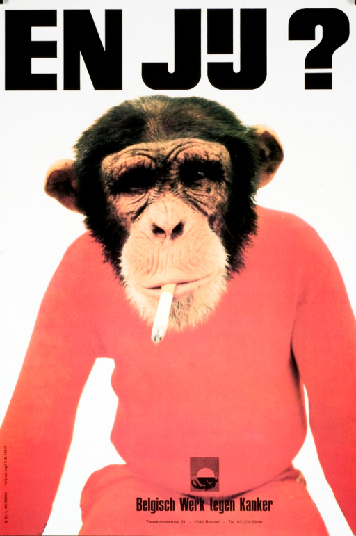 <p>A lighted cigarette is in the mouth of a monkey in a red sweater.</p>