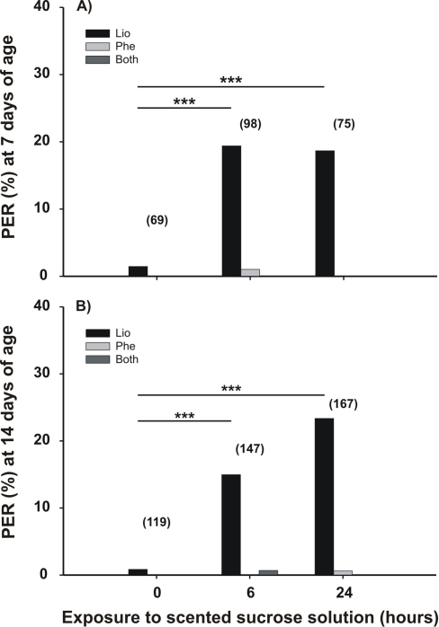 Memory retention after exposure to scented food.Prior to tests, caged adult bees were fed a constant reward program of unscented 15% w/w sucrose solution. Either at 7 days old (A) or 14 days old (B), percentage of bees that extended their proboscis upon the first presentation of an odor (% PER) was calculated for: the solution odor (linalool, LIO, gray bars), a novel test odor (phenylacetaldehyde, PHE, dark gray bars), or both (white bars) in bees that were fed for 24 hours with a scented 15% w/w sucrose solution. Asterisks indicate statistical differences (G-test for, ** p<0.01; for details see the text). The number of observations is shown in parentheses.