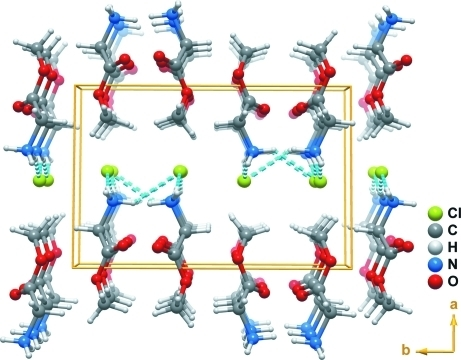 Perspective view along the [001] direction of the crystal packing of the title compound. N+—H···Cl- hydrogen bonds are represented as light-blue dashed lines.