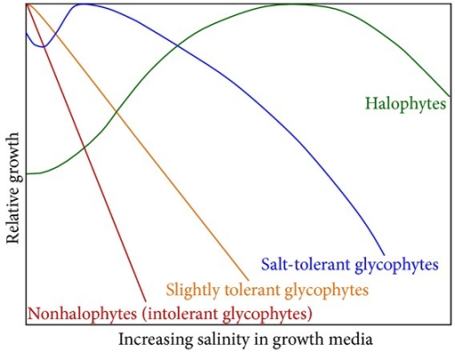 Schematic illustration of growth of different kinds of plants under saline condition.