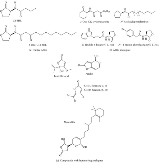 Structure of natural and synthetic AHL-based compounds which inhibit biofilm formation by P. aeruginosa. (a) Native N-acyl-l-homoserine lactone, signal molecules of P. aeruginosa (C4-HSL and 3-oxo-C12-HSL), (b) synthetic analogue of AHLs with side aromatics and synthetic analogues of AHLs with modified lactone rings, and (c) natural (manoalide, penicillic acid, and patulin), and synthetic (furanones) compounds with lactone ring analogues.
