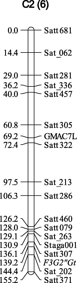 Linkage mapping of F3G2″Gt using recombinant inbred lines derived from a cross between soybean cultivars Nezumisaya and Harosoy. The name of the linkage group is indicated at the top followed by the chromosome number in parenthesis. Distances (cM) of markers from the top of the linkage group are shown on the left.