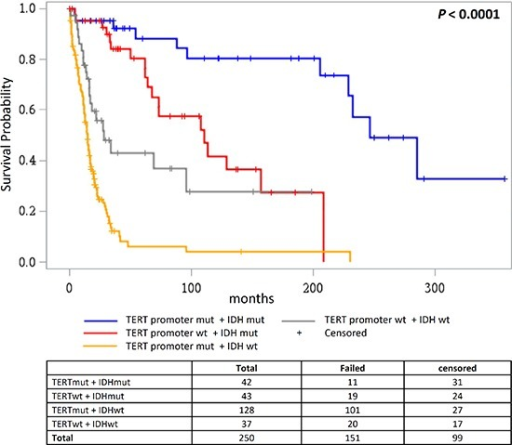 Overall survival according to combined status of TERT promoter and IDH mutationsOverall survival in glioma patients where patient groups are defined by the mutational status of the TERT promoter and IDH1/IDH2.