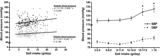 Association of salt intake with blood pressure. The left panel shows linearregression analysis between an increase in systolic and diastolic blood pressureas a function of salt intake. The right panel shows blood pressure adjusted forage and body mass index as a function of salt intake. Adjusted systolic anddiastolic blood pressures were more sensitive to salt intake over 9 g/d. Data arereported as means±SE. *P<0.01 vs <9 g/d of salt consumption(two-way ANOVA and post hoc Bonferroni test).