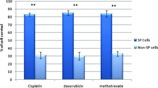 Drug sensitivity assay. SP cells showed an increased drug resistance and an enhanced survival rate after treatment with doxorubicin, cisplatin or methotrexate. Values are expressed as the mean ± standard deviation of three independent experiments. **P<0.01 for non-SP vs. SP. SP, side population.