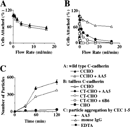 Analysis of mAb AA5 activity on cell lines and in vitro.  (A) Effect of mAb AA5 on C-cadherin–mediated adhesion of  CHO cells. C-CHO cells (expressing wild-type C-cadherin) were  harvested in the presence of calcium and then allowed to attach  to CEC1-5–coated capillary tube in the presence of either mAb  AA5 Fab or nonimmune mouse Fab for 30 min. Adhesive  strength was measured as the resistance of cell detachment to  progressively increasing flow rates. The experiment was performed in triplicate and the percentage of cells remaining ± SE  was plotted as a function of flow rate. (B) Effect of mAb AA5 on  the adhesive function of a cytoplasmic tail truncated C-cadherin  expressed in CHO cells (CT-CHO). Adhesion of CT-CHO cells  was assayed in the presence of either mAb AA5 Fab or nonimmune mouse Fab using the flow assay described in A. The effect of  inhibitory mAb 6B6 is shown for comparison. The experiment was  performed in triplicate and the percentage of cells remaining ±  SE was plotted as a function of time. (C) Effect of mAb AA5 on  the aggregation of CEC1-5–coated FluoSpheres. Dispersed  CEC1-5–coated FluoSpheres were incubated either with mAb  AA5 Fab or with nonimmune mouse IgG Fab in the presence of  calcium for various time periods. As a negative control, samples  were also incubated with the presence of EDTA. The number of  aggregated FluoSpheres (superthreshold particles) were counted  using a Coulter counter. The experiment was performed in triplicate and the number of superthreshold particles ± SE was plotted as a function of time.