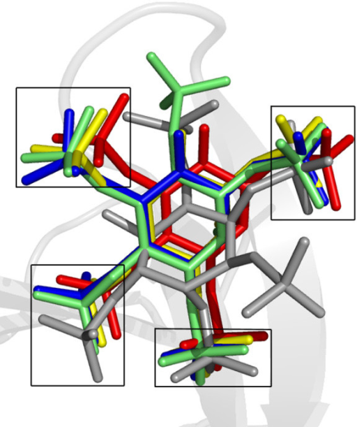 Conserved binding positions of inositol phosphates to PH domains. Superimposed inositol phosphates in complex with PH domains from five different proteins: DAPP1/PHISH-Ins(1,3,4,5)P4, red, 1FAO; Grp1-Ins(1,3,4,5)P4, yellow, 1FGY; ARNO-Ins(1,3,4,5)P4, blue, 1U27; Grp1-Ins(1,3,4,5,6)P5, green, 1FHW; C-PH-Ins(1,2,3,5,6)P5, gray, 2I5F. The four conserved phosphate binding positions are boxed.