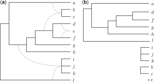 (a) A phylogenetic network N. (b) A concrete drawing τ of the forest ℱ(N). This drawing induces a partial order of the leaves such that a<τd<τf<τg<τh<τl, i<τj<τk, and b<τc.
