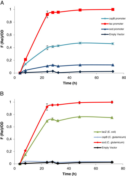 Assessment of promoter and RBS activities in C. glutamicum with the pTGR system. (A) Fluorescence intensity of eGFP relative to OD during the growth of C. glutamicum using different promoters to drive the expression of the reporter gene. (B) Fluorescence intensity of eGFP relative to OD testing three different RBSs. Cultures were grown in BHIS medium and supplemented with 0.5 mM IPTG when indicated. Values shown are means of three independent determinations. The standard deviations were in all the cases less than 10% of the corresponding means.