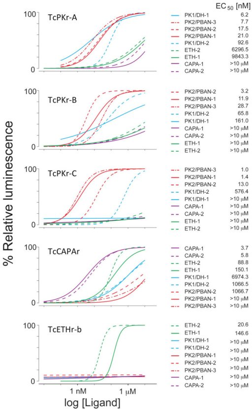 Dose-response curves of five different PRXamide receptors of T. castaneum for nine endogenous ligands.Left panel shows dose-response curves for each receptor with 9 putative endogenous ligands. Right panel shows names of ligands and their EC50s in rank order. Values of data points are found in Supplementary Data 1.
