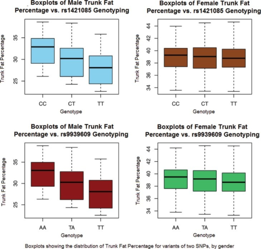 A graph of boxplots showing the distribution of trunk fat percentage for males and females for SNPs rs9939609 and rs1421085. Percent trunk fat is measured in percentage (%).
