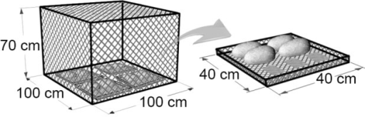 Diagram of the experimental enclosure.Diagram of the experimental enclosure and one of the four identical trays that contained stones for macroinvertebrate colonisation and glass tiles for periphyton colonisation. Dimensions are indicated.