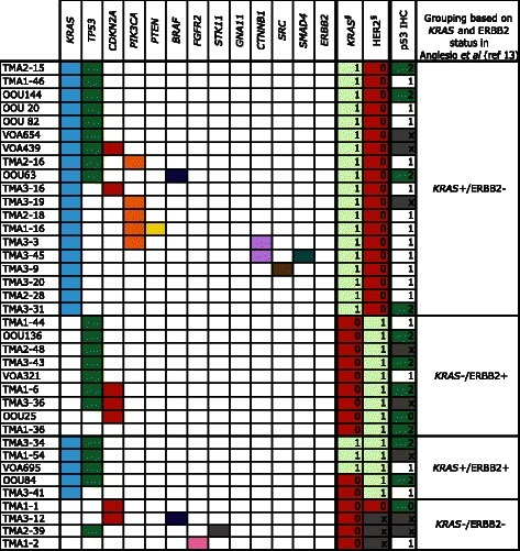 "Mutation frequencies and immunohistochemistry scores for 37 mucinous carcinoma. As in Fig. 2, Solid color in any of the first 13 columns represents a presumed somatic (COSMIC) hotspot mutation in the given case. In the last three columns numbers represent binarized IHC score for p53 and § ""Original ERBB2 amplification and KRAS mutation"" status derived from Anglesio et al., 2013 [13] where 0 = Negative, 1 = Positive, X = Unknown, the latter derived from IHC, FISH, and/or CISH. IHC for p53 is displayed as three-tiered IHC score where 0 (no staining) and 2 (>50 % positive nuclei) represent abnormal p53 status and 1 (1-50 % positive nuclei) represents normal p53 status"