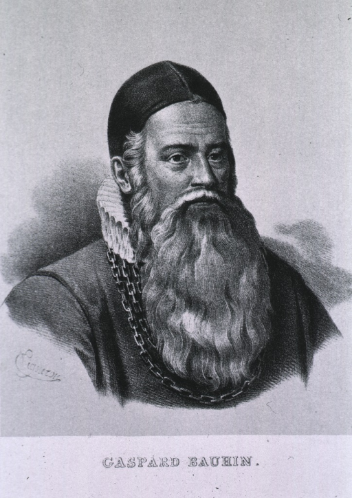 <p>Head and shoulders, front, long beard, wearing heavy chain and cap.</p>