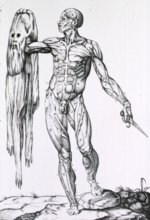 <p>Male muscle figure with skin in his right hand and knife in his left, standing.</p>