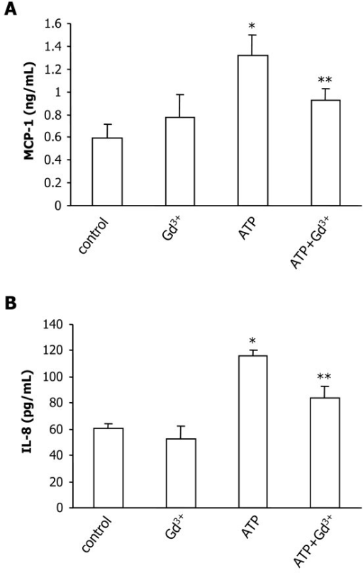 Production of MCP-1 and IL-8 in C6 glioma. C6 cells were treated with ATP (100 μM) in the presence, or absence, of gadolinium (Gd3+, 1 μM) for 48 h. (A) Levels of MCP-1 production (ng/ml) and (B) levels of IL-8 production (pg/ml) for the different treatments. Data are presented as mean ± SEM from 4 independent experiments. * indicates significant difference from control (p < 0.001) and ** indicates significant difference from ATP-treated group (p < 0.05).