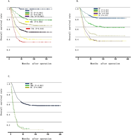 Comparison of survival curves between EMs and the T, N, M stages.3A: Overall survival curves showed different outcomes among patients with T4a, EM1 and T4b (P = 0.002 and 0.016, respectively). 3B: Overall survival of patients with EM1 was worse than those of the N2 stage and was comparable to those of the N3 stage (P = 0.039 and 0.437, respectively). 3C: Patients with EM2 had a comparable overall survival with those of the M1 stage (P = 0.896).