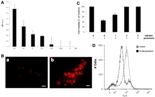 ROS generation by jacaranone and loss of mitochondrial transmembrane potential (Δψm) in jacaranone-treated cells.(A) Redox cycling ability of jacaranone detected by NBT/glycinate assay. (B) Untreated melanoma cells (a) or cells treated with jacaranone at 50 µM for 3 h (b), were incubated with the oxidative fluorescent dye DHE (5 µM) for detection of superoxide anion production. Bars = 20 µm. (C) B16F10-Nex2 cells were pre-incubated with NAC at indicated concentrations for 30 min, and then jacaranone at 20 µM was added. Cell viability was assessed using Trypan Blue exclusion test 24 h after jacaranone addition. (D) B16F10-Nex2 cells were treated with 50 µM jacaranone for 24 h and then Δψm was determined using TMRE by flow cytometry.
