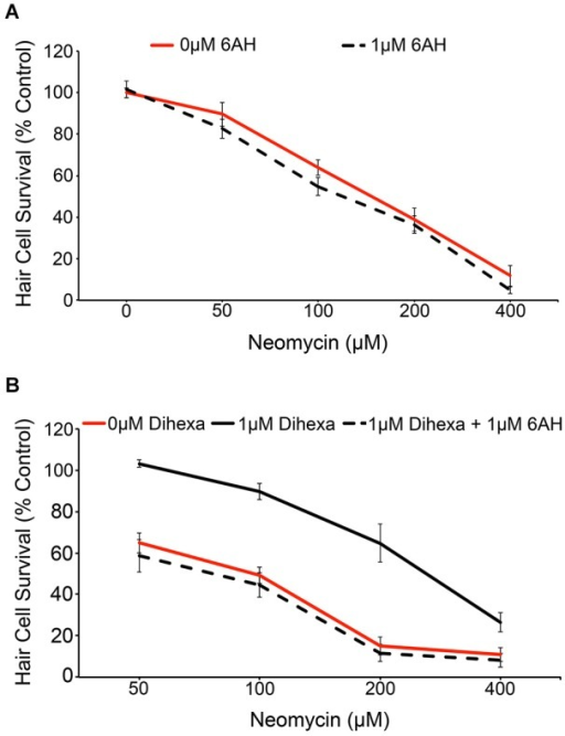 Dihexa-mediated protection is inhibited by the HGF antagonist 6-AH. (A) Treatment with 1 μM 6-AH does not alter lateral line hair cell survival in response to neomycin (Two-way ANOVA; 6-AH: F(1,72) = 3.255 p = 0.0754). (B) Treatment with 1 μM Dihexa decreases neomycin-induced hair cell death over multiple concentrations of neomycin. Co-treatment with 6-AH completely attenuates Dihexa-mediated protection (Two-way ANOVA; Dihexa: F(2,76) = 76.30 p < 0.001). There is a significant difference (p < 0.001) when comparing 1 μM Dihexa vs. 1 μM Dihexa plus 1 μM 6-AH at 50, 100, and 200 μM neomycin treatment groups, p < 0.05 at 400 μM neomycin. N = 6–9 animals per treatment, error bars represent ± s.e.m.