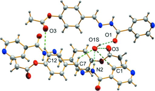 Graphical representation showing hydrogen bonding interactions in the crystal structure of [C15H13N3O3]·(H2O).