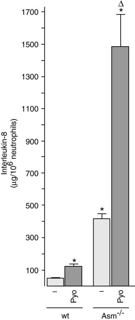 Pyocyanin-induced interleukin-8 is negatively regulated by acid sphingomyelinase. Peritoneal neutrophils were obtained from wt or Asm-deficient mice and stimulated with 50 μM Pyo for 8 h. Interleukin-8 levels were determined by ELISA. Shown are the means±SD of four independent experiments; *p<0.05 compared with untreated, Δp<0.05 compared with treated wild-type cells, by ANOVA. ELISA, enzyme-linked immunosorbent assay; Pyo, pyocyanin.