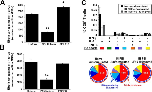 FormulationF16 improves quantitative and qualitative Ebola glycoprotein-specificCD8+ T cell responses in mice with prior exposureto adenovirus. PEI to adenovirus 5 was induced by instilling 5 ×1010 virus particles of AdNull, an E1/E3 deleted virusthat does not contain a transgene cassette, in the nasal cavity ofmice 28 days prior to immunization. (A) The systemic effector CD8+ T cell response. Ten days after vaccination,mononuclear cells from the spleen were harvested and stimulated withan Ebola GP-specific peptide and responsive cells were quantitatedby ELISpot. (B) The mucosal effector CD8+ Tcell response. Ten days after vaccination, mononuclear cells collectedfrom BAL fluid were harvested, pooled according to treatment, andstimulated with an Ebola GP-specific peptide and responsive cellswere quantitated by ELISpot. (C) The polyfunctional CD8+ T cell response. Ten days after immunization, splenocytesfrom 5 mice per treatment group were pooled and stimulated with anEbola glycoprotein-specific peptide. Each positively responding cellwas assigned to one of 7 possible combinations of IFN-γ, IL-2,and TNF-α production and quantitated as shown in the bar graph.The most potent responders, those producing all 3 cytokines in responseto stimulation, are depicted by the red arcs in the pie charts. Theproportion of cells in samples from each treatment group that produceIFN-γ is depicted by the blue arc. The number in each pie chartdenotes the percentage of triple producers found in samples from agiven treatment group. Data reflect average values ± the standarderror of the mean for six mice per group. * indicates a significantdifference with respect to the naive/unformulated group, *p < 0.05, **p < 0.01, one-way ANOVA,Bonferroni/Dunn post hoc analysis.