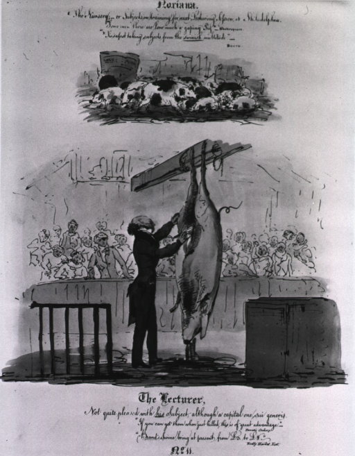 <p>During his lecture Dr. Knox is dissecting a recently killed pig which is hung by its hind feet from a beam overhead; blood is pouring from the wounds inflicted by Knox; the audience watches in horror.</p>