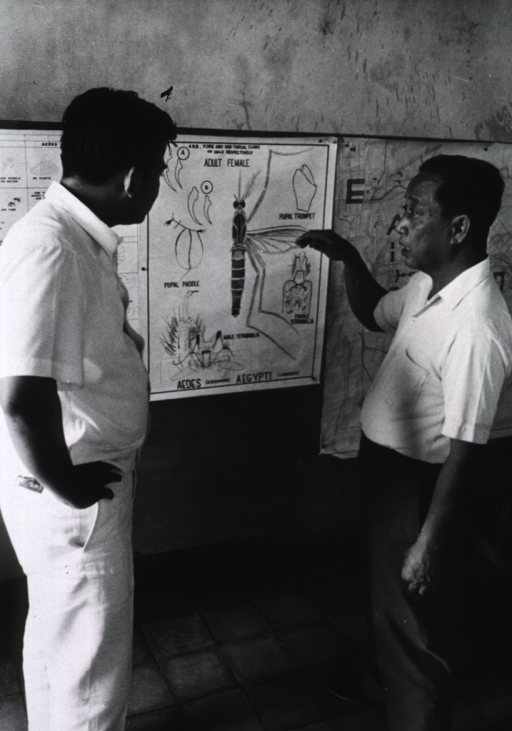 <p>Two men examine a poster of the adult female Aedes aegypti mosquito.</p>