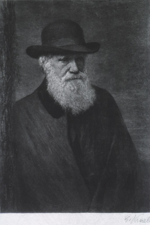 <p>Half-length, right pose, wearing hat and coat.</p>