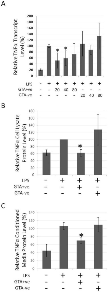 TNFα response in RAW264.7 cells treated with GTA+ve and GTA-ve extracts. RAW264.7 cells were pre-treated for 4 hours with GTA+ve or GTA-ve extracts followed by the addition of LPS (1 ug/ml) for 20 hours. (A) TNFα mRNA transcripts as determined by real-time rtPCR, (B) TNFα relative protein levels in cell lysates following 80 ug/ml treatment, and (C) TNFα protein levels in conditioned media as determined by ELISA. Asterisks indicate p < 0.05 relative to LPS treatment alone. Data are expressed as the average of three duplicate experiments ± 1S.D.
