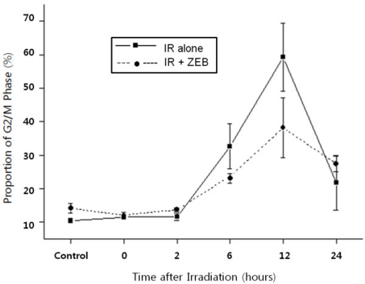 The effect of zebularine on radiation-induced G2/M arrest in A549 cells. A549 cells were treated with 800 uM zebularine for 18 hours and then irradiated with 6 Gy. A549 cells were accumulated in G2/M phase after radiation. This radiation-induced G2/M arrest was abrogated by zebularine pretreatment at 6-12 hours, but this abrogation disappeared at 24 hours.