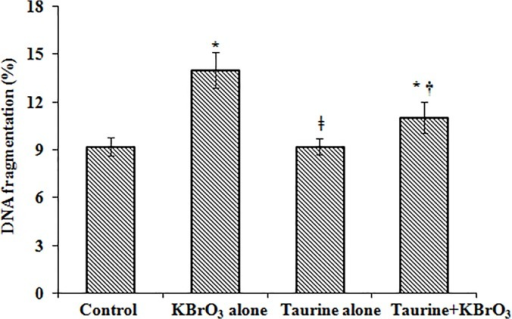 DNA fragmentation in intestinal mucosal homogenates determined by diphenylamine assay.Results are mean ±SEM of 6 different preparations. * Significantly different at p< 0.05 from control. † Significantly different at p < 0.05 from KBrO3-treated group. ǂ Significantly different at p < 0.05 from KBrO3 treated group