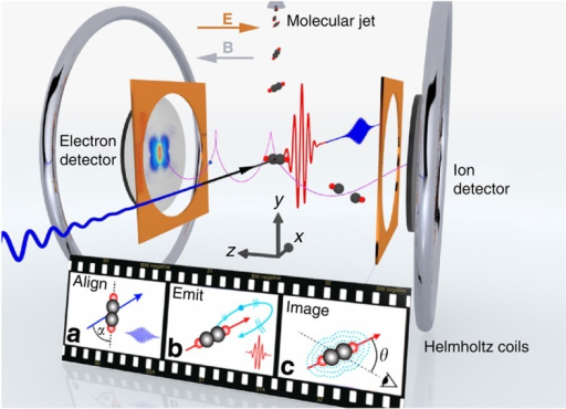 Laser-induced electron diffraction from aligned C2H2 molecules using a mid-infrared OPCPA source and a reaction microscope.The cartoon film shows the procedure. (a) The C2H2 molecules are pre-aligned by focusing the 1.7 μm pump pulse (blue) into a molecular jet. (b) The 3.1 μm pulse (red) is used to generate high-energy electrons that subsequently rescatter off the parent ion. (c) The rescattered electrons carry structural information of the parent ion that is contained in the detected angular momentum distributions. The anticollinear electric (E) and magnetic (B) fields guide the charged fragments towards opposing position-sensitive detectors.