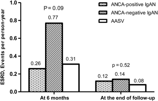 ESRD in ANCA-positive IgAN, ANCA-negative IgAN and AASV patients with matched proportions of crescentic glomeruli. ANCA, antineutrophil cytoplasmic autoantibody; IgAN, IgA nephropathy; AASV, ANCA-associated systemic vasculitis; ESRD, end-stage renal disease.