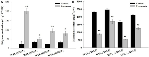 Ethylene production (A) and amino acid content (B) in two soybean lines (WTL and WSL) after 5 and 10 days of waterlogging treatment. In the figure, WTL denotes the waterlogging tolerant line (PI408105A) and WSL denotes the waterlogging susceptible line (S99-2281). Data is the average ± standard error (n = 3). The * and ** shows the values are significantly different using P < 0.05 and P < 0.01 respectively.