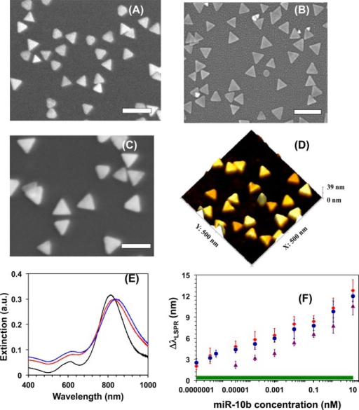 Scanning electron microscopy (SEM) images of three different edge-length gold nanoprisms were used for LSPR-based miR-10b sensors fabrication: (A) 34 nm, (B) 42 nm, and (C) 47 nm. Scale bars: 100 nm. (D) Atomic force microscopy image of (on the average) 42 nm edge length gold nanoprisms. (E) Changes in the LSPR dipole peak (λLSPR) position of averagely 42 nm edge length gold nanoprisms before (black) and after (red) functionalization with mixed HS-PEG6:HSC6-ssDNA-10b. The sensing platform was then rinsed with PBS buffer and incubated with 10 nM of miR-10b solution in human plasma; then, rinsed with PBS buffer and dipole peak position (blue) was determined. (F) Average λLSPR shift (ΔλLSPR) of the sensing platforms, which were prepared with three different edge lengths nanoprisms, 34 nm (purple triangles), 42 nm (red diamonds), and 47 nm (blue dots) as a function of miR-10b concentration. All extinction spectra were measured in PBS buffer to determine the ΔλLSPR. The green bar represents three times the standard deviation (σ) of the blank (mixed HS-PEG6:HSC6-ssDNA-10b functionalized gold nanoprisms attached onto silanized glass substrate). Inasmuch as log scale is commonly used in the LSPR biosensing literature,35,40,46 in order to investigate nonspecific absorption at a lower concentration range, concentrations were plotted on the axis in log scale.