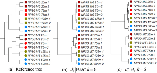 The reference and clustering trees based on various models for different depths of metatranscriptomic marine samples in Experiment 4.(a) Reference tree of different depths of metatranscriptomic samples from the ocean. (b) The best clustering tree with VLMC background sequence model. (c) The best clustering tree when using FOMC and lp-norm measures.