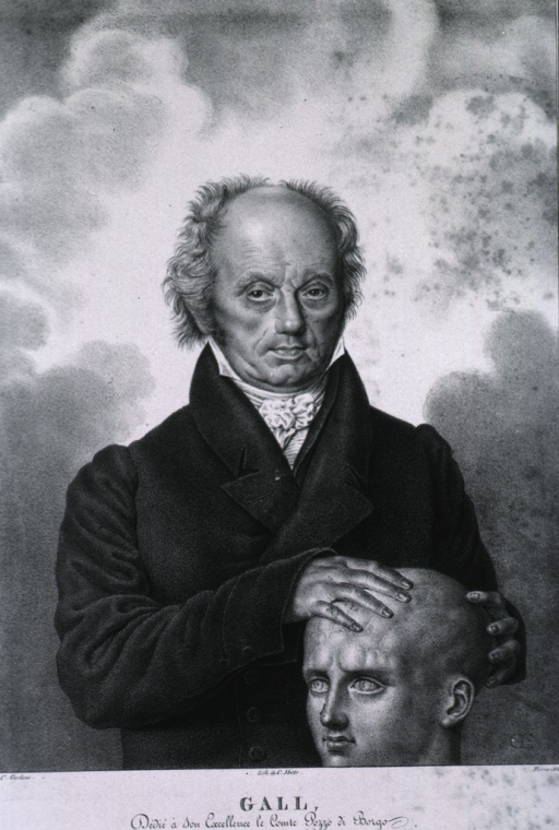 <p>Half-length, standing, front pose; hands on a head, demonstrating phrenological procedures.</p>